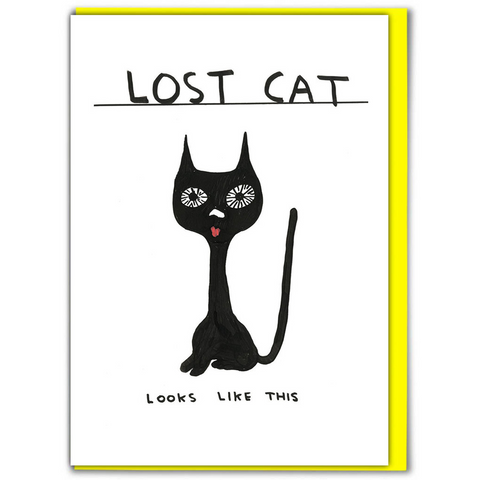 Lost Cat Greetings Card