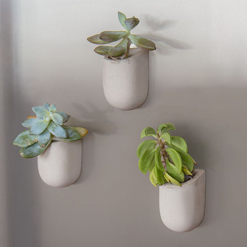 Magnetic Planters