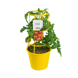 "8"" Vegetable Cage - Peppers Only"