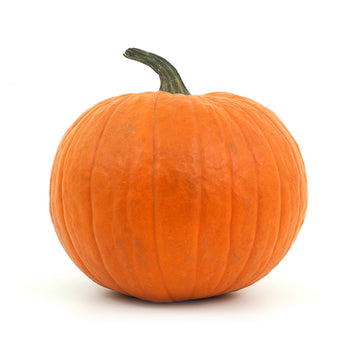 Pumpkin - Large