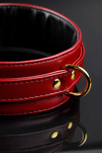 Buckle Neck Collar Restraints