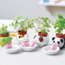 Load image into Gallery viewer, Drinking Animal Planter