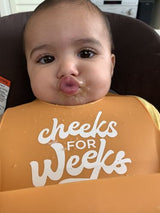 Cheeks for Weeks Wonderbib 🇺🇸
