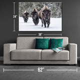 Roaming Herd Canvas Print - One Herd