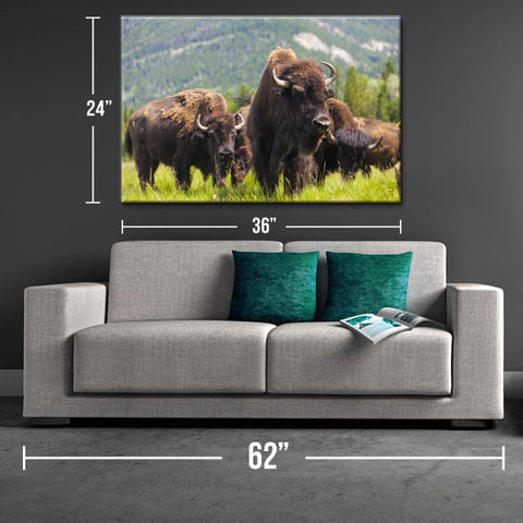 Roam On Bison Canvas Print - One Herd
