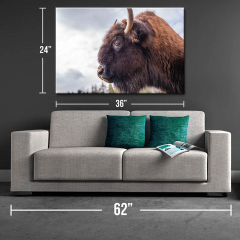 Bison Strength Canvas Print - One Herd