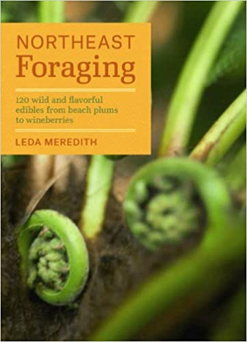 NORTHEAST FORAGING  by Leda Meredith
