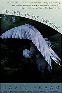 THE SPELL OF THE SENSUOUS by David Abrams