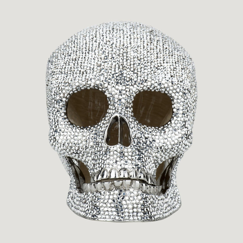 Large Crystal Skull Head with Box