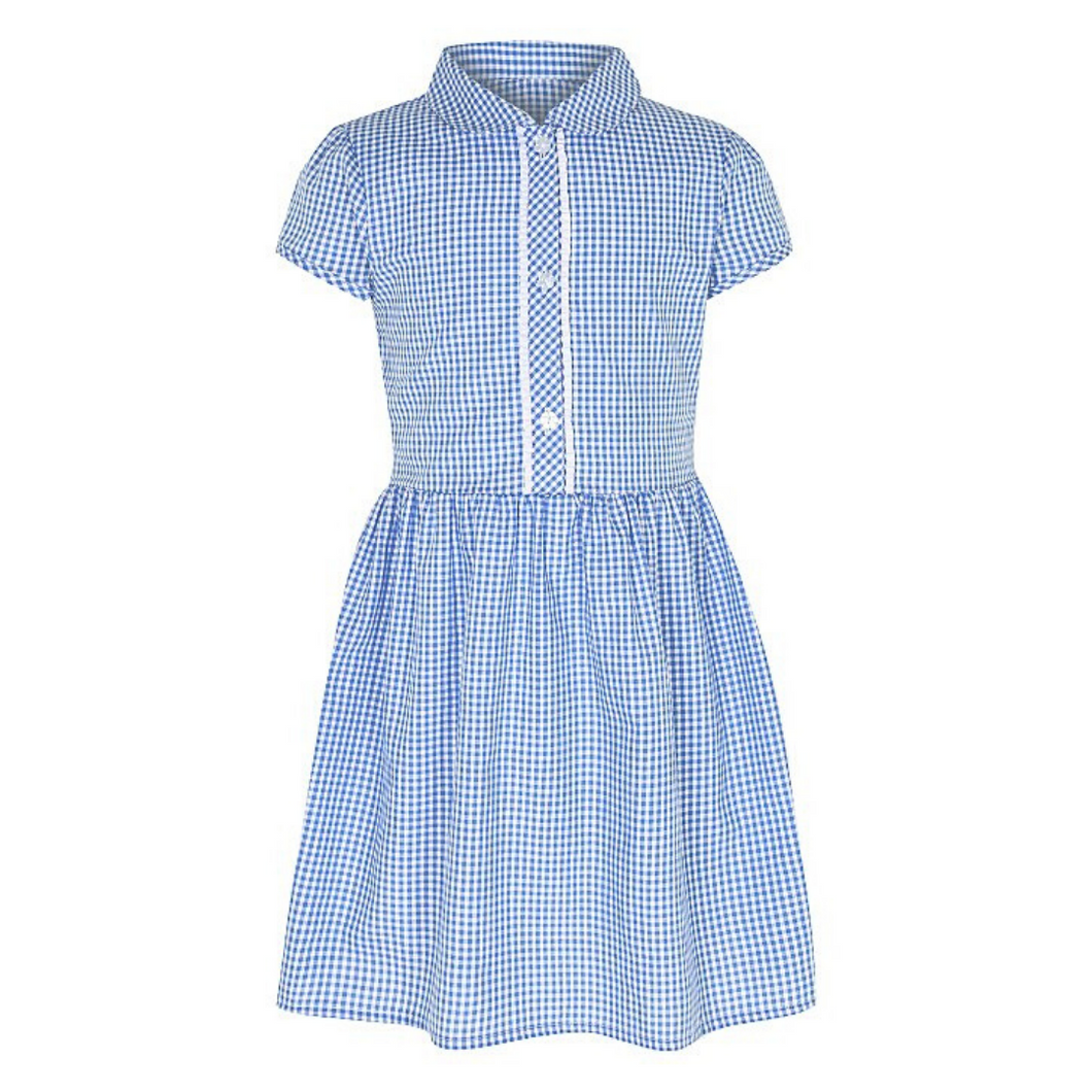 Gingham Dress - Blue