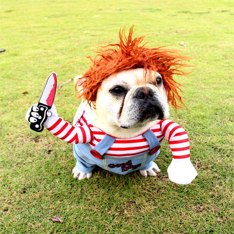 Pet Dog Funny Clothes | Dog Holding a Knife Cosplay Costume | Halloween Christmas Comical Outfits With Wig HahaGet