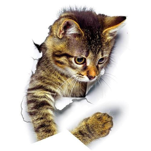 3D Cats / Dogs Wall Stickers Hole View Vivid Pets Image Stickers - HahaGet