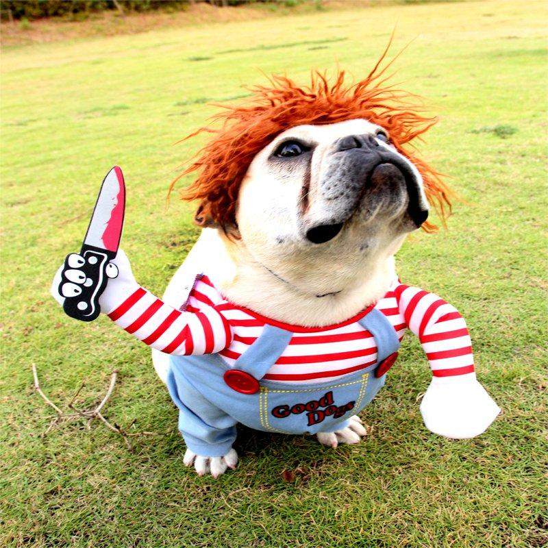 Pet Dog Funny Clothes | Dog Holding a Knife Cosplay Costume | Halloween Christmas Comical Outfits With Wig - HahaGet