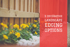 Decorative Landscape Lawn Edging Options:  5 Choices