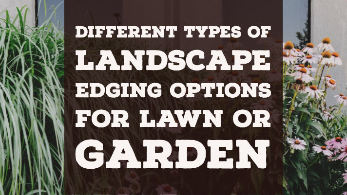 Different Types of Landscape Edging Options for Lawn or Garden