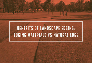 Benefits of Landscape Edging: Edging Materials vs Natural Edge