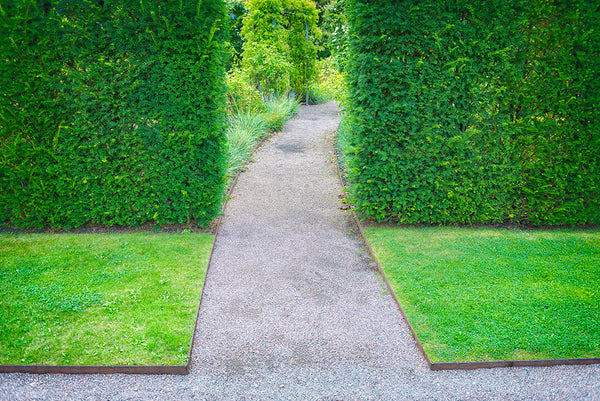 Landscape Edging Ideas for Picky People (They Can Look as Good as They Work!)