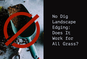 No Dig Landscape Edging:  Does It Work for All Grasses?