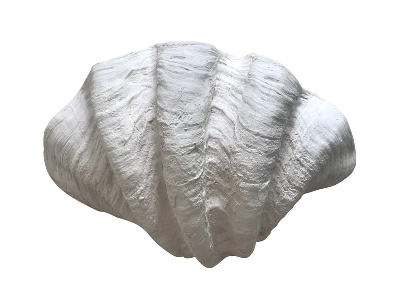 Clam Shell White
