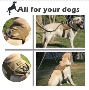 Maazu™ No Pull Dog Harness