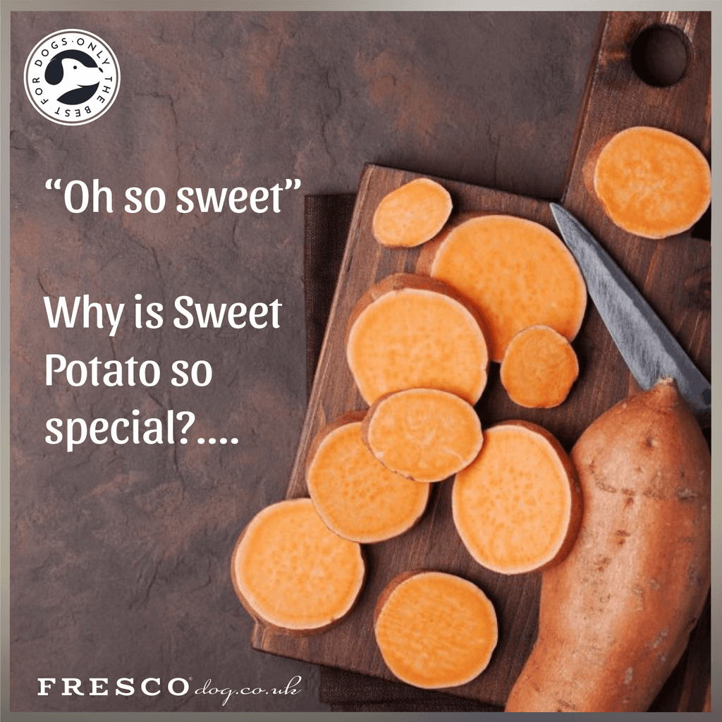 """Oh so sweet"".....Why are Sweet Potatoes so special?"