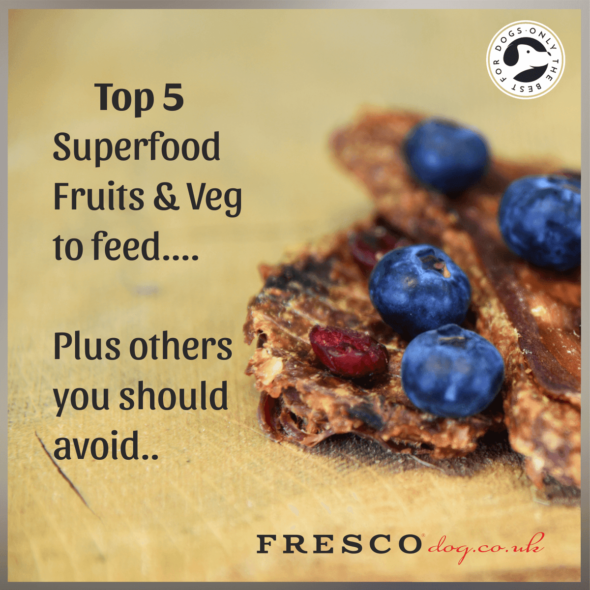 Top 10 Fruits & Veg your dog can & can't eat