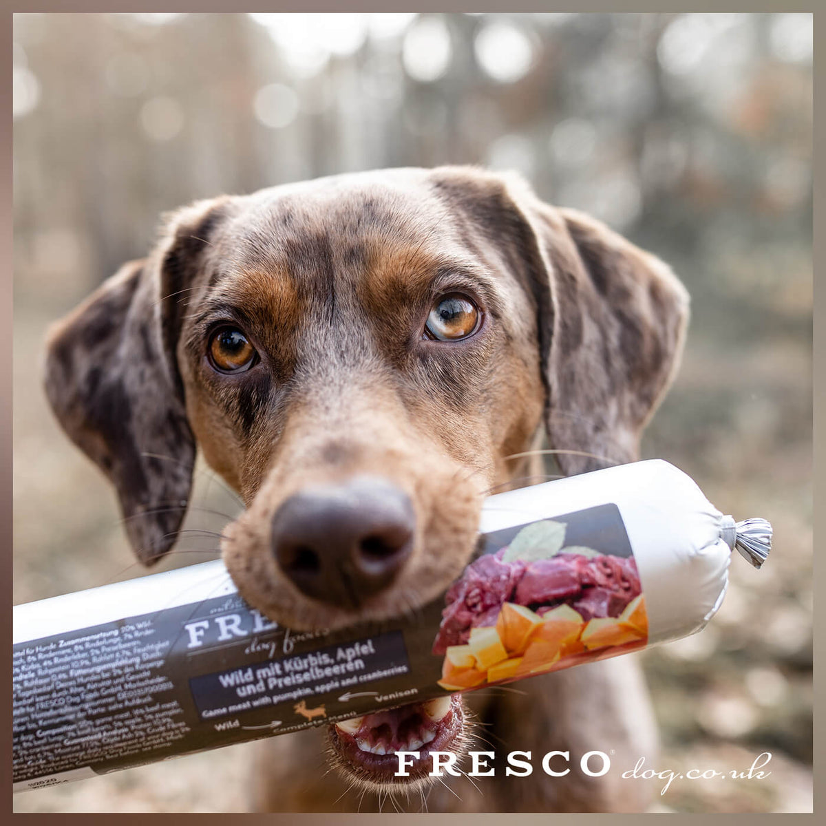 FRESCO Wet Food.....Questions & Answers