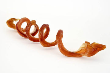 A spiral-shaped bully pizzle (25cm)