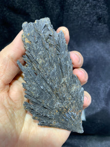 Black Kyanite - Large