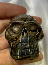 Load image into Gallery viewer, Stromatolite Skull