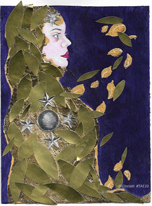 Shrouded in Leaves and Stars