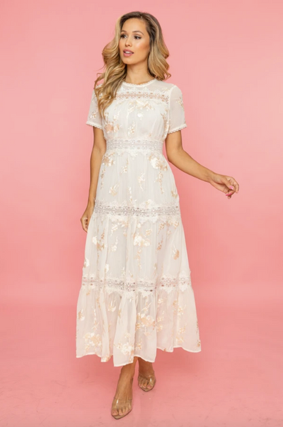 Dreamy Days Embroidered Maxi Dress