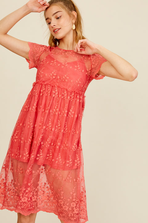 Balcony Views Embroidered Mesh Lace Dress