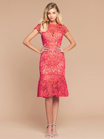 BAROQUE LACE DRESS - WATERMELON/NUDE
