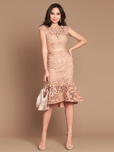 BAROQUE LACE DRESS - POWDER