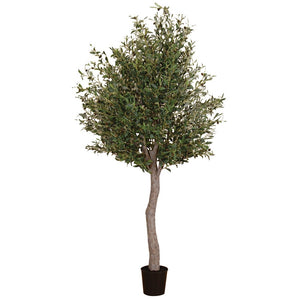 Large Faux Olive Tree