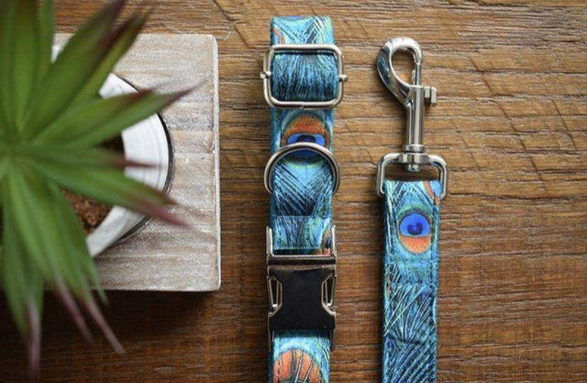 Peacock dog collar and lead sets