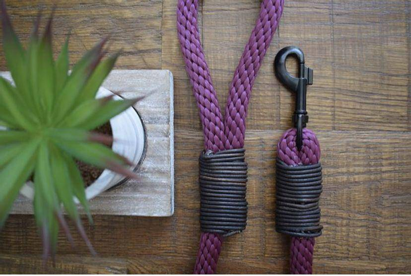 Rope Dog Lead | Variety Of Colours - Parkgate Paws