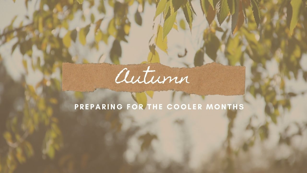 Preparing For The Cooler Months