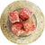 Pet DELI Frozen Food Chicken & Heart Mince