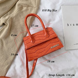 Serpentine Mini Women Handbag Famous Brand Luxury Handbags for women Crossbody Bags Female 2019 Messenger Bags Small Tote Bag - Creative Dreamscape