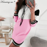 2020 Autumn Patchwork Scarf collar dress Women Winter Long sleeve Mini Sweatshirts Dress Lady Pocket Leopard Pullover dresses - Creative Dreamscape
