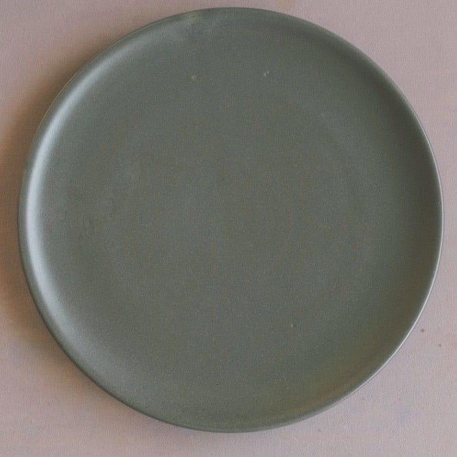 Horizon Lunch Plate
