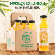 Load image into Gallery viewer, Bayani Brew Moringa Dalandan (6 bottles)