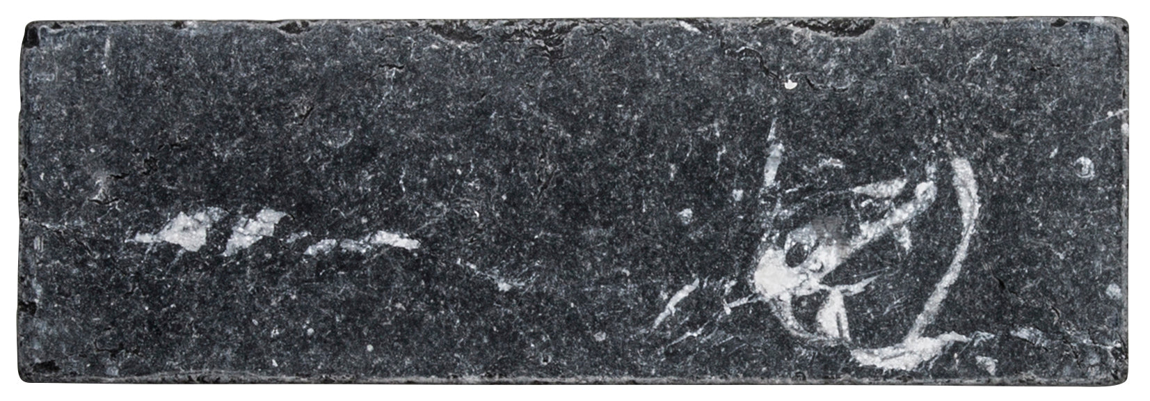 Nero Marquina Marble Field Tile product photo