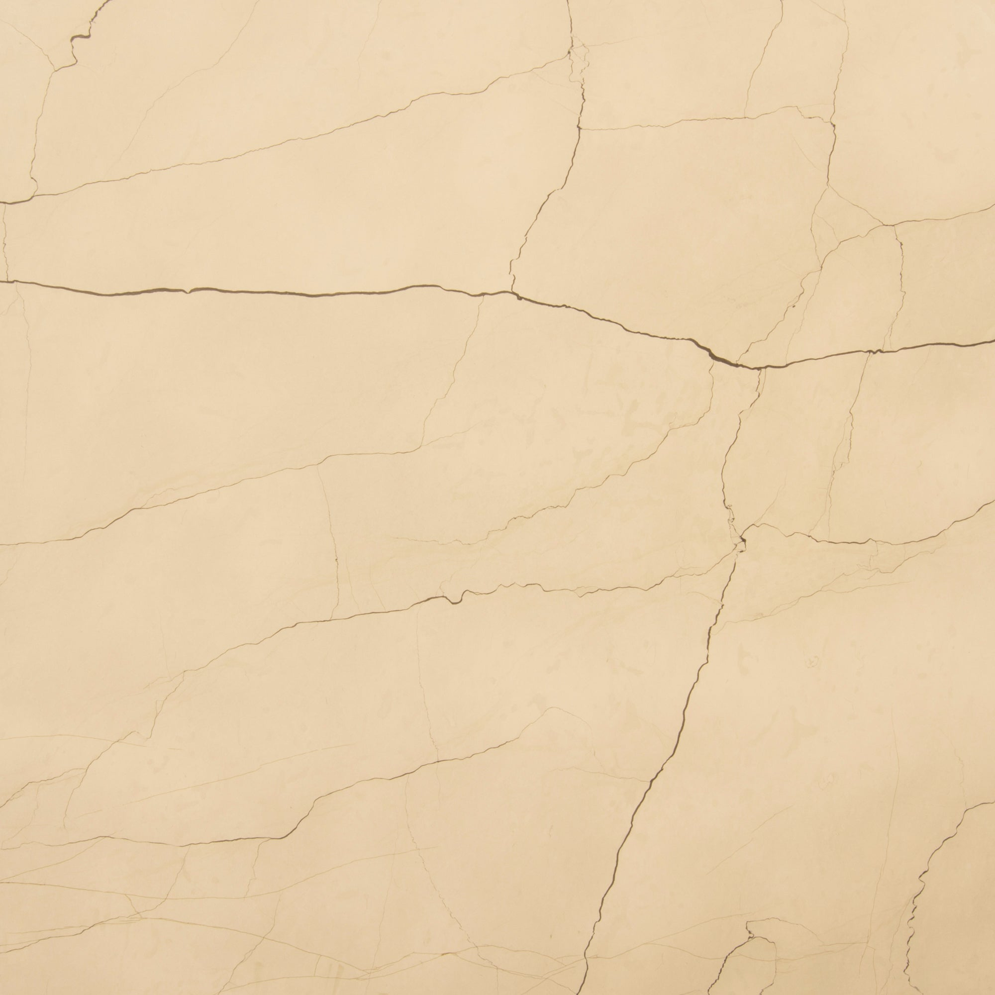 2cm Balkan Beige Limestone Swatch Card  Honed Samples Slab product photo