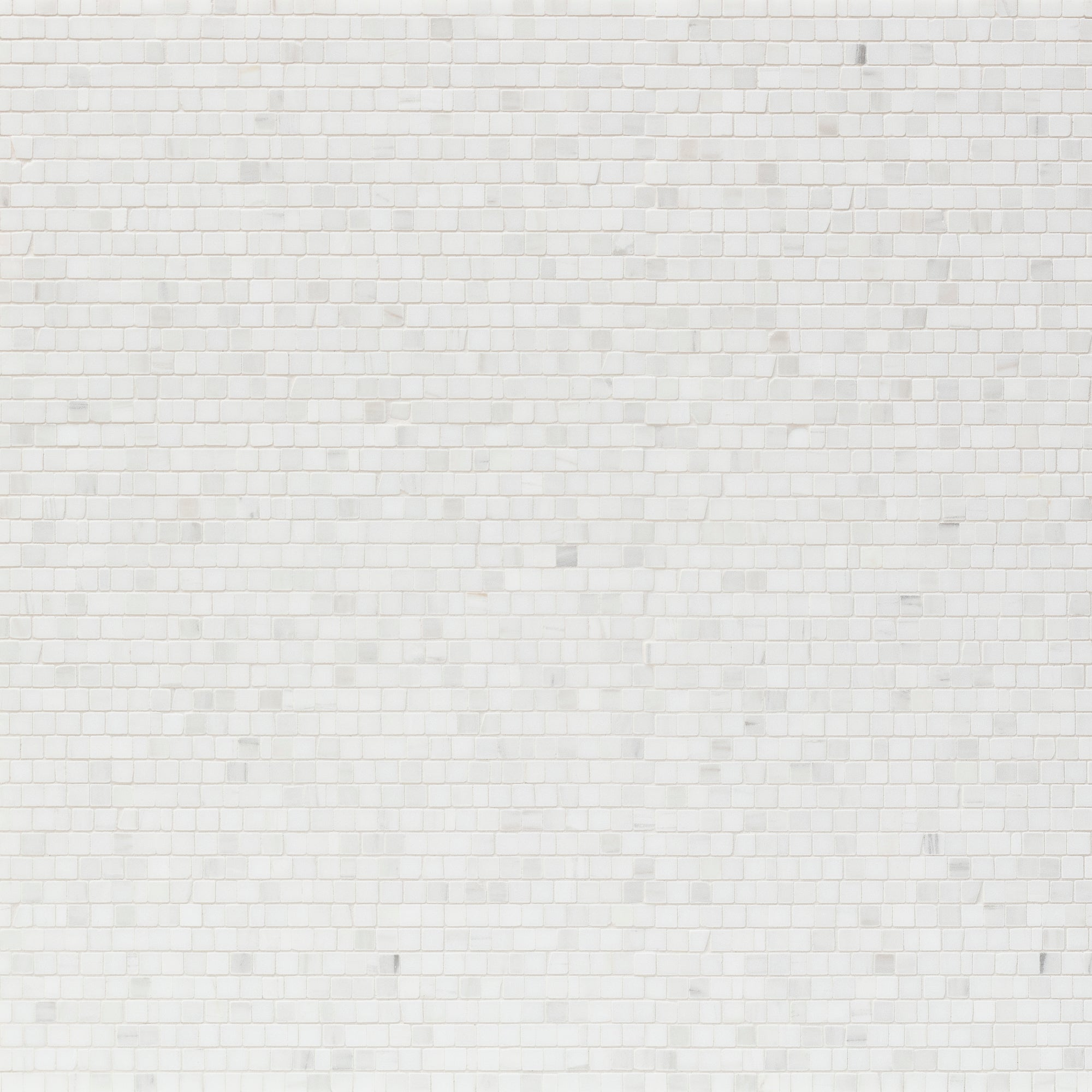 Mosaic Bianco Dolomiti Marble Swatch Card  Honed Samples Broken Joint 1.0cm product photo