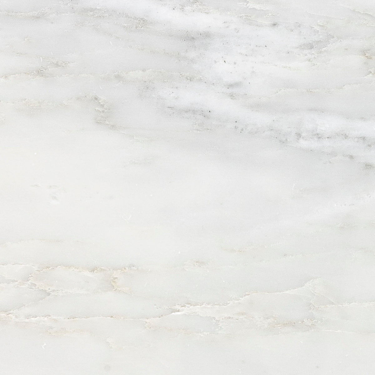 Pacific White Marble Swatch Card  Honed 12 x 24 x 3/8