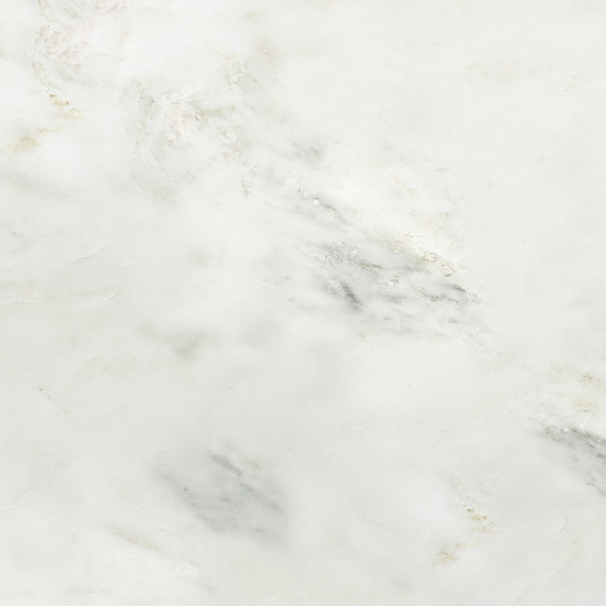 Pacific White Marble Field Tile product photo