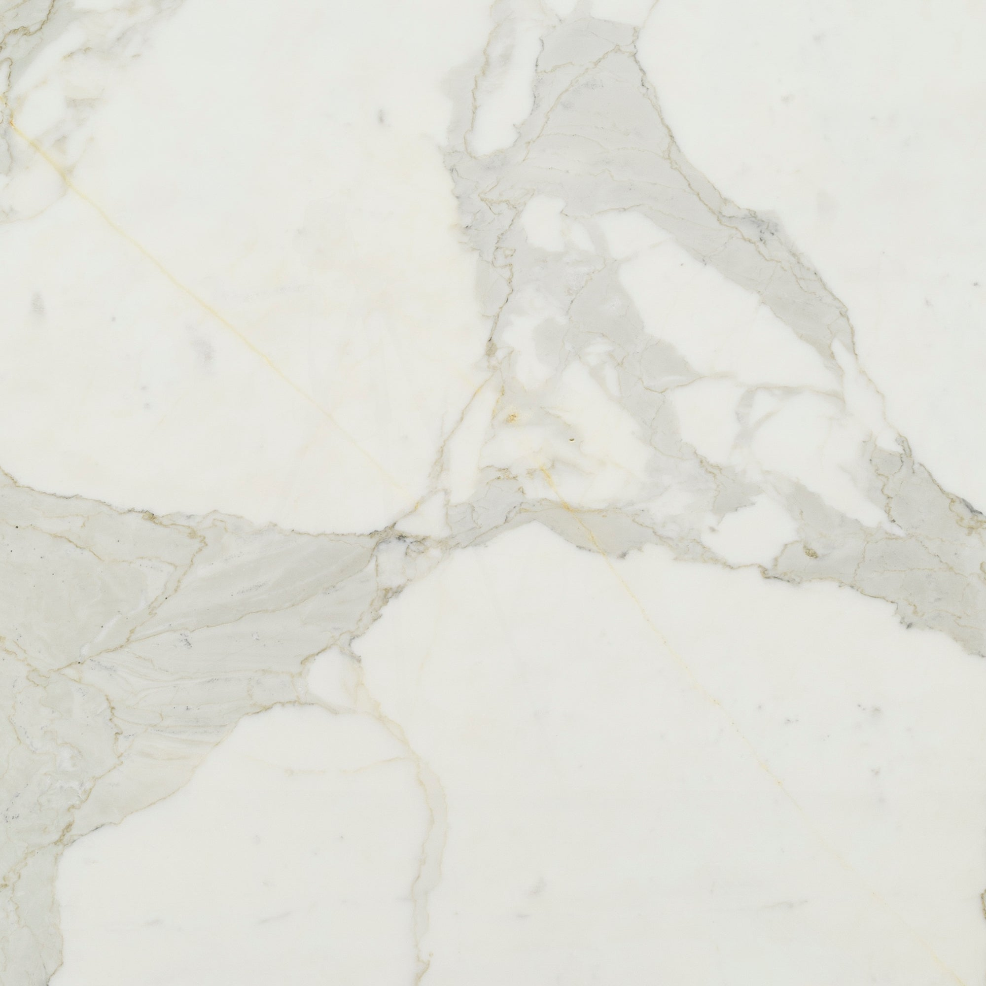 2cm Calacatta Gold A2 Standard Marble Swatch Card  Polished Samples Slab product photo